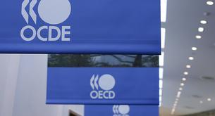 España registrará la mayor caída del paro de la OCDE