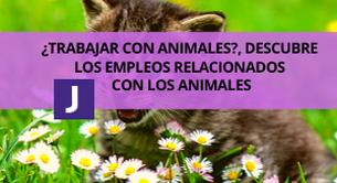 TRABAJOS RELACIONADOS CON ANIMALES